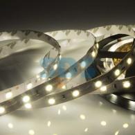 141-632 LED лента 24 В, 10 мм, IP23, SMD 5050, 60 LED/m, цвет свечения теплый белый (3000 К)
